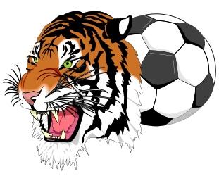 SoccerCampTigerColor.jpg